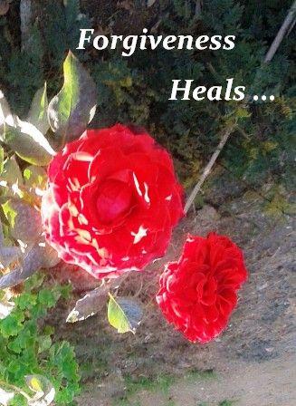 Forgiveness -- photo courtesy of Iqbal Osman 1